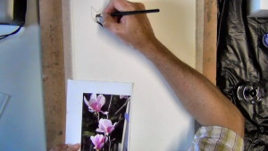 Before the outlines dries I use a wet brush to wet the petal area and let some of the ink bleed to give the petal form.