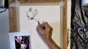 I continue with my pen, ink and brush till the first flower is nearly completed.